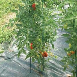 Atramos ir kiti priedai augalams (0)