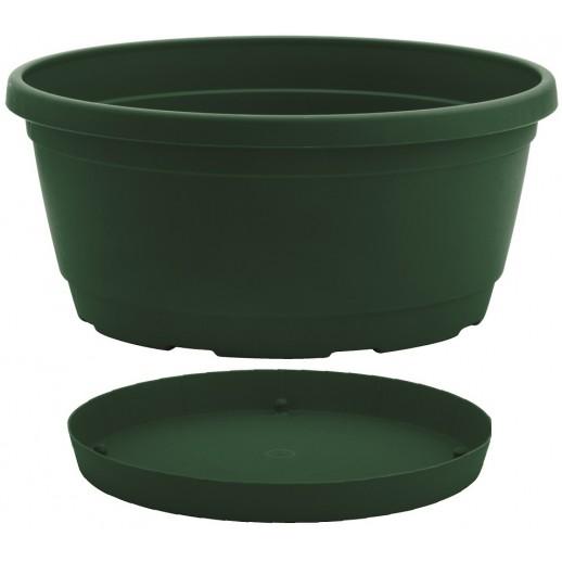 Nicoli dubuo su lėkštele Rumba 25 žalios spalvos