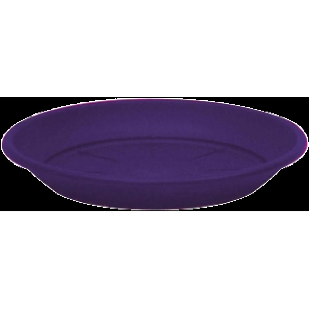 Marchioro lėkštelė Petra 34 baklažano spalvos